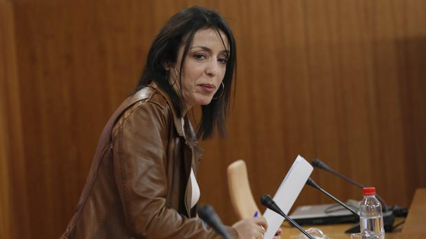 La presidenta del Parlamento andaluz, la diputada de Ciudadanos Marta Bosquet