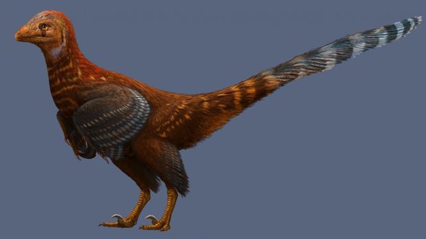Jianianhualong tengi medía un metro de altura y tenía plumas adaptadas al vuelo