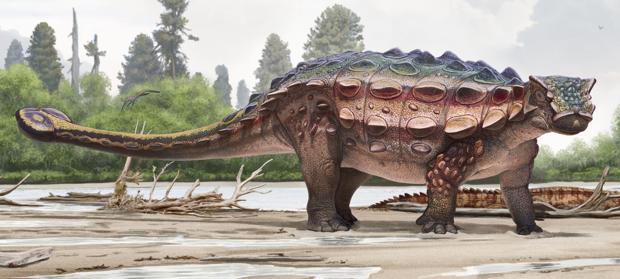 El nuevo dinosaurio acorazado