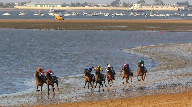 Más de 80 caballos serán protagonistas en las arenas sanluqueñas.