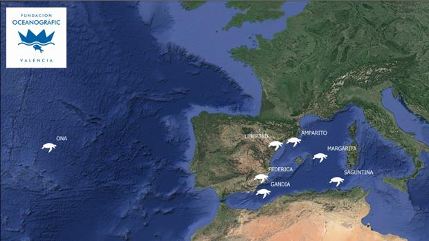 Imagen del mapa satélite