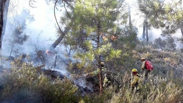 Algunos de los efectivos del servicio de extinción de incendios