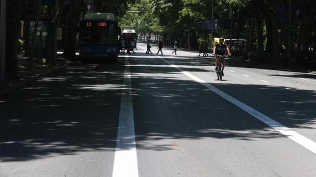 Nuevo carril bus-taxi delimitado en el Paseo del Prado sentido norte