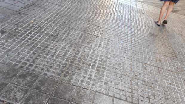 No hay más que pasear por las calles de Cádiz con mirada limpia para guarrearla pronto con la evidente porquería