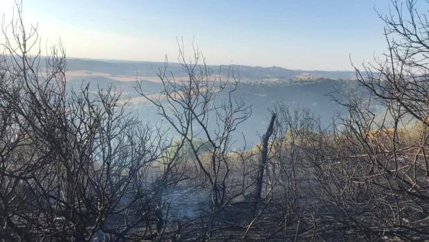 El incendio declarado en Vejer ya está controlado.
