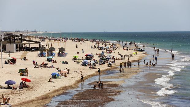 Bañistas disfrutando de la playa en verano