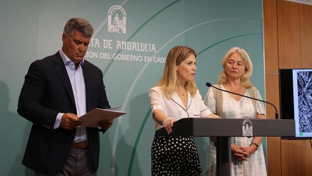 Ana Mestre durante la rueda de prensa en la Delegación del Gobierno en Cádiz