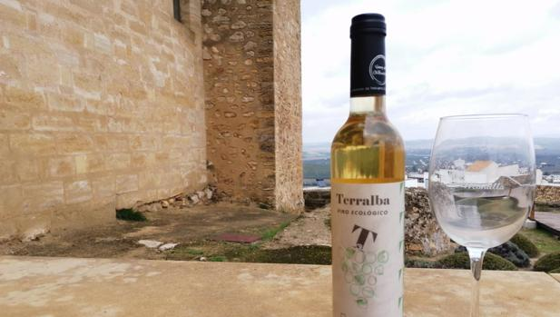 El vino Terralba Ecológico de Cooperativa Albarizas de Trebujena, ganador de Ecoracimo 2020