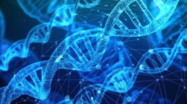 Ciertos genes están asociados con un mayor consumo de alcohol y tabaco