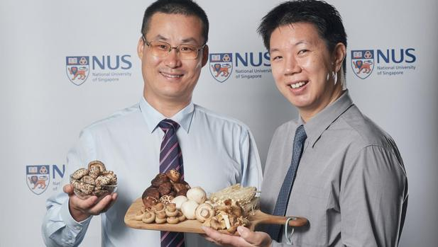 El profesor Lei Feng (izquierda) y el doctor Irwin Cheah posan con las setas mencionadas en el estudio sobre deterioro en el cerebro