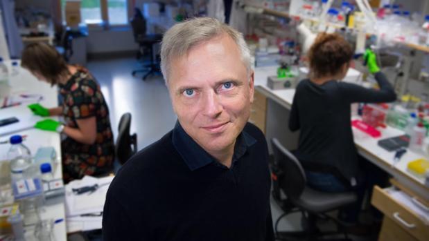 Patrik Ernfors, profesor del Departamento de Bioquímica y Biofísica Médica del Instituto Karolinska e investigador principal del estudio