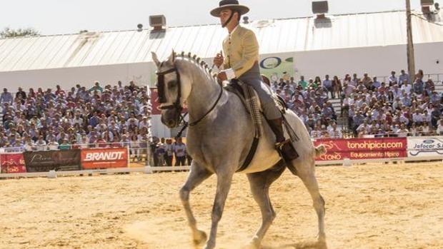 El sevillano Jonatan Peña y «Talavante», campeones de España 2017 en Doma Vaquera