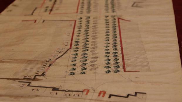 Plano recuperado de autor desconocido de la Alameda de Hércules