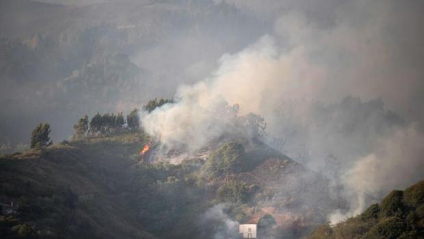 Incendio Gran Canaria: desastre medioambiental sin precedentes
